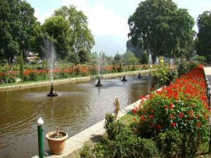3 Best attractive things to do in Srinagar